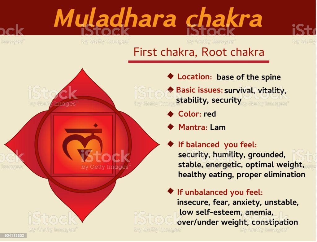 En este momento estás viendo Chakra muladhara