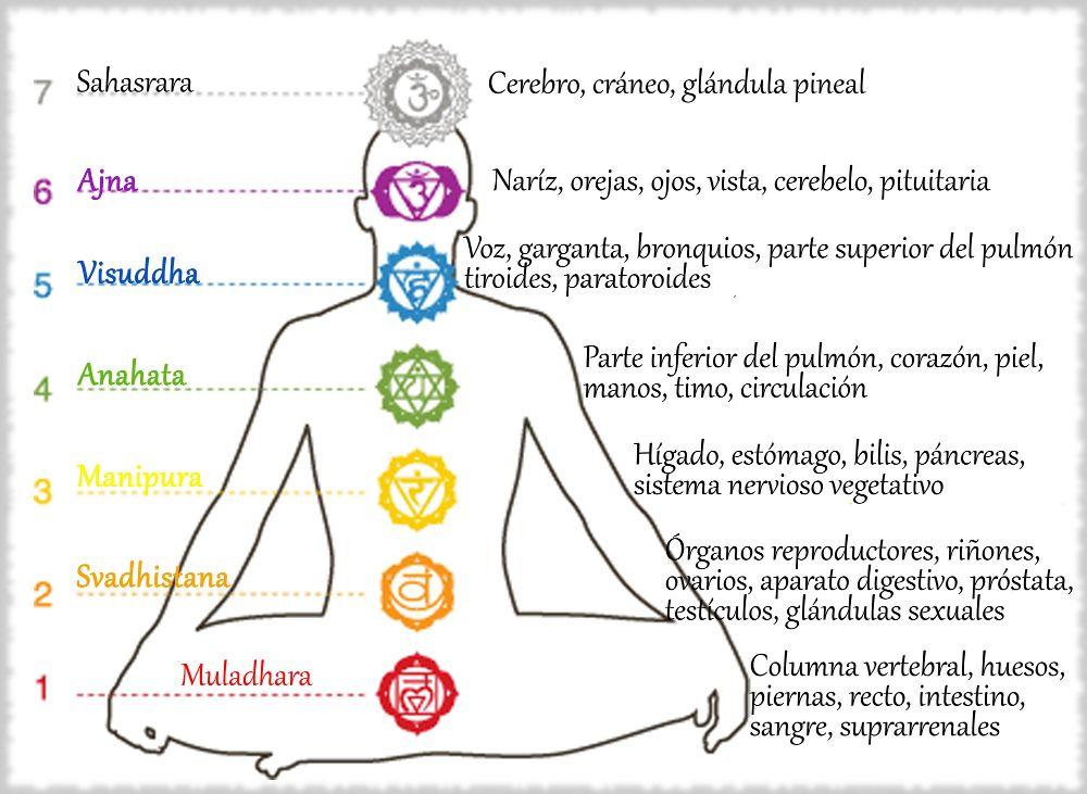 En este momento estás viendo Chakras del cuerpo humano como abrirlos