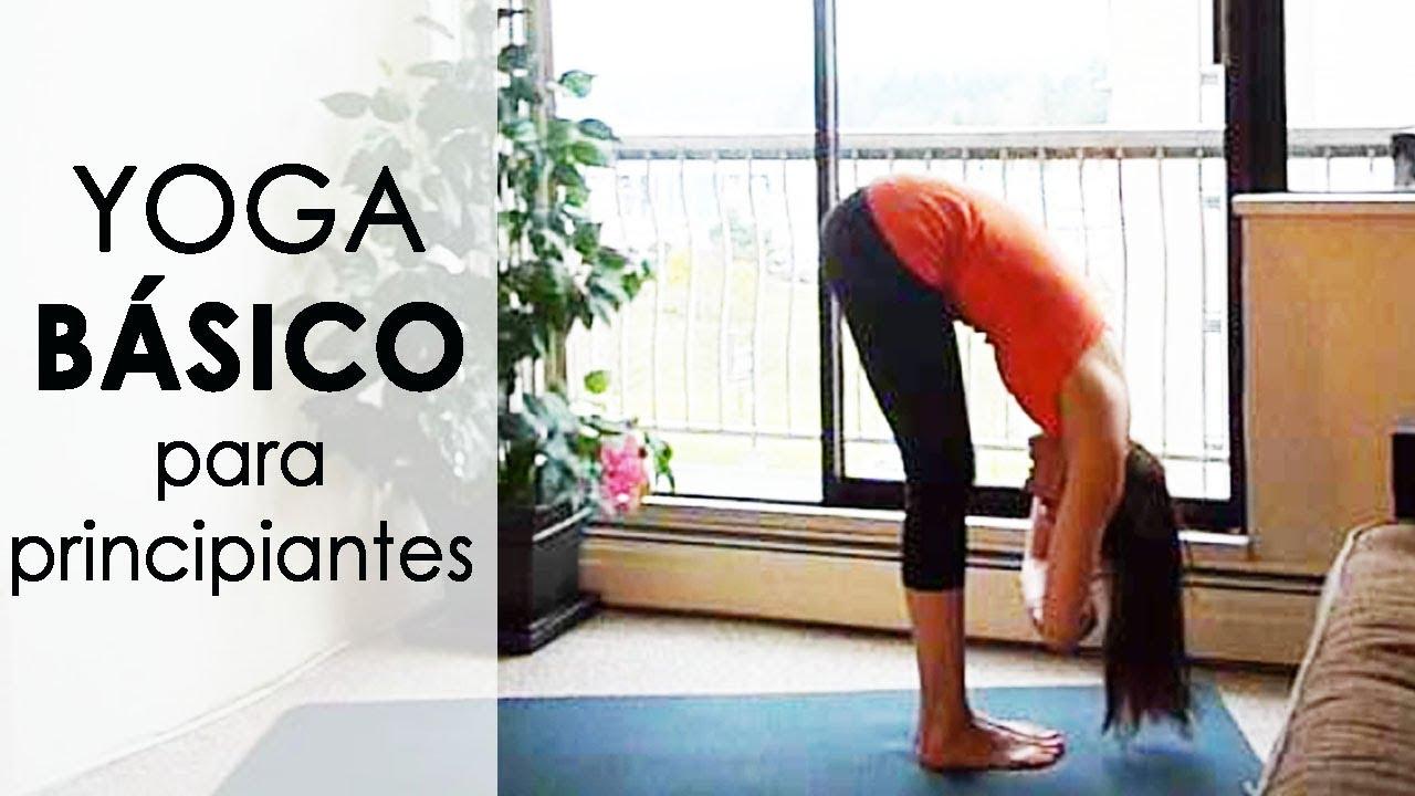 En este momento estás viendo Clase yoga principiantes
