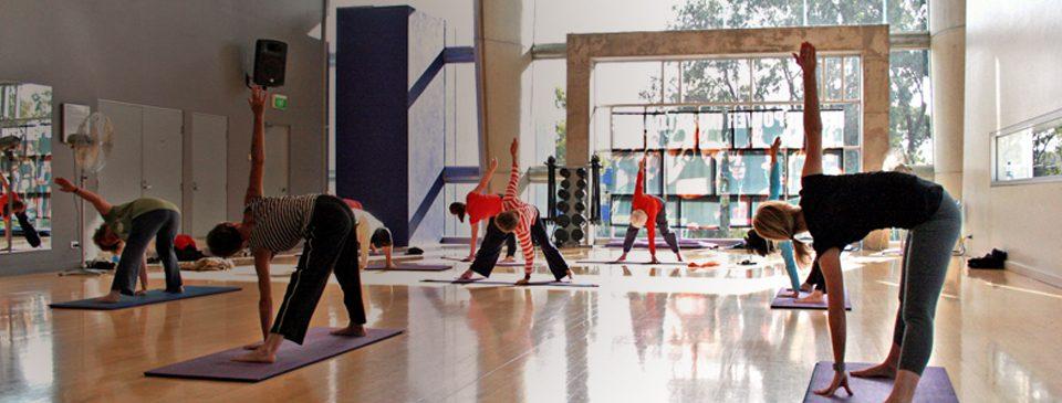 En este momento estás viendo Escuelas de yoga