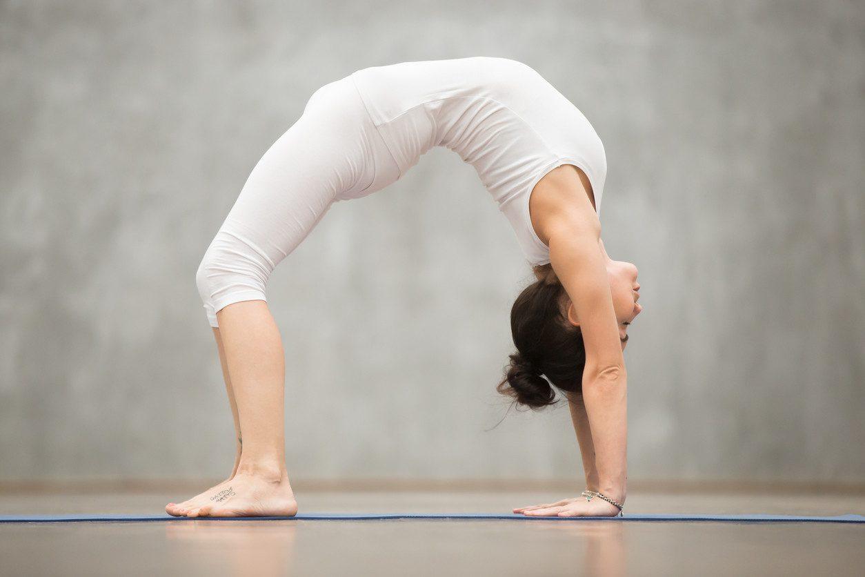 En este momento estás viendo La rueda yoga
