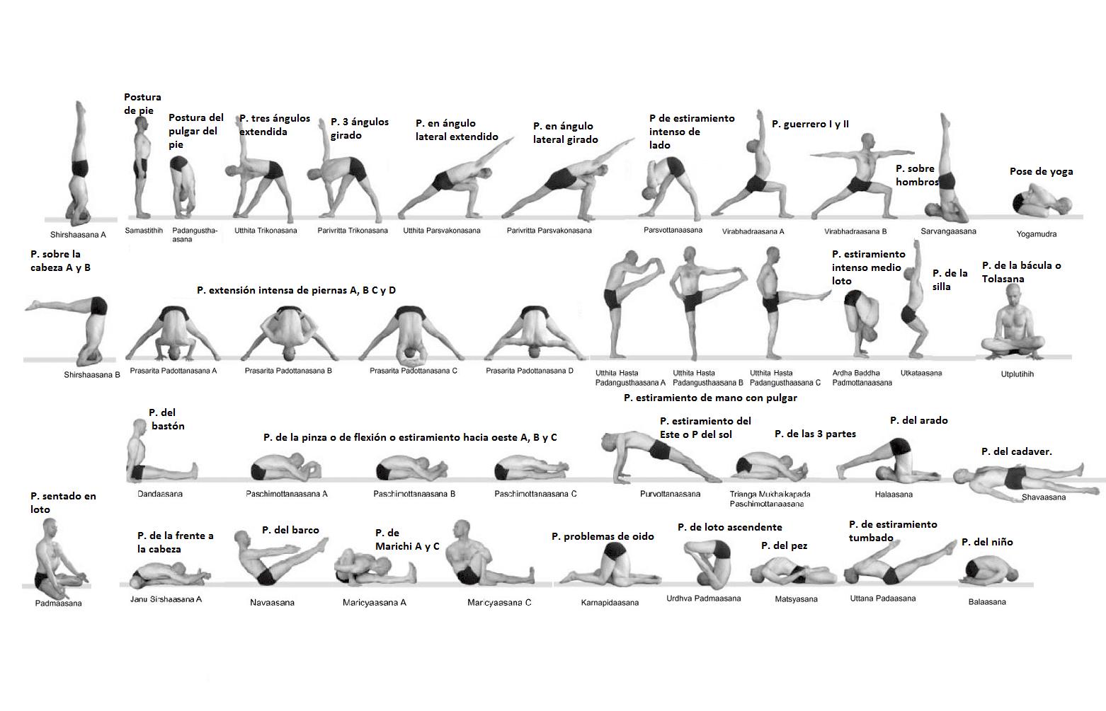 En este momento estás viendo Posturas de yoga nombres