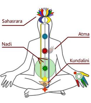 En este momento estás viendo Qué es el kundalini