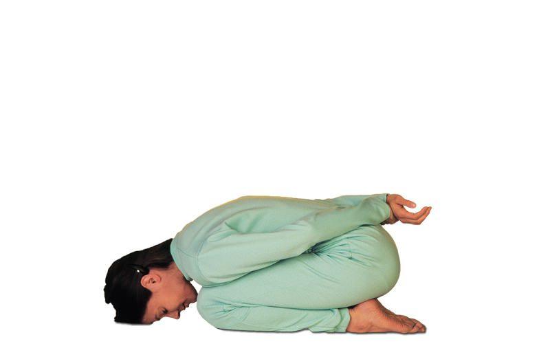 En este momento estás viendo Yoga mudra