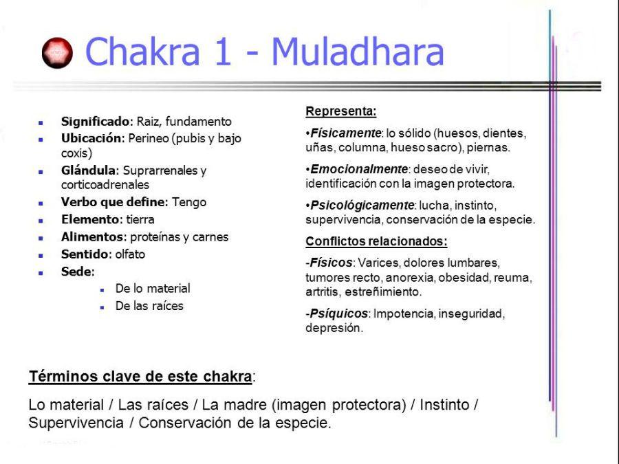 En este momento estás viendo Primer chakra significado